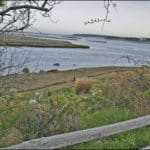 View over a split rail fence of water and grassy shoreline