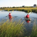 Two people in kayaks holding oars paddling through the water surrounded by seagrass