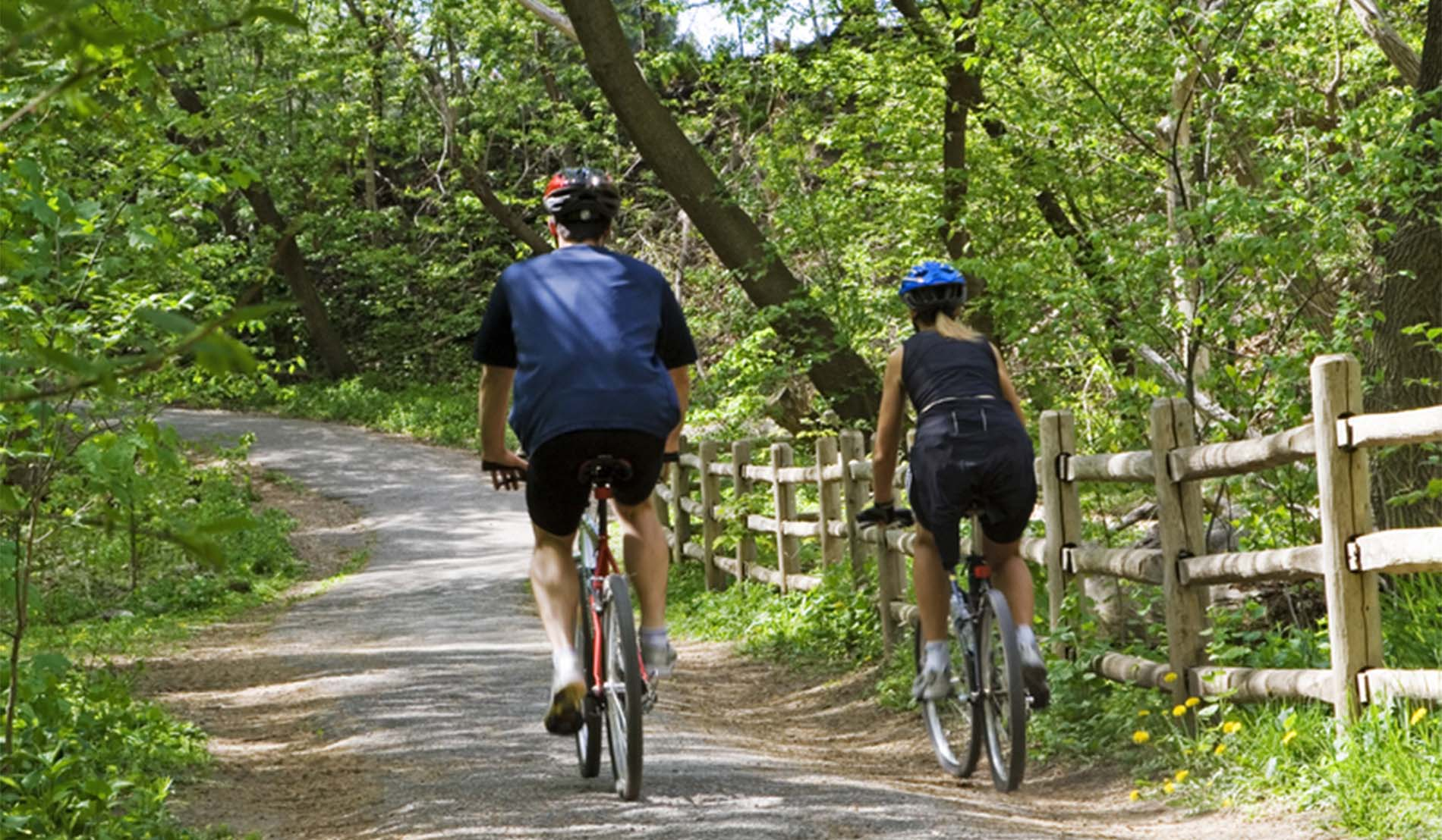 Man and woman wearing helmets on bicycles riding down a tree lined path