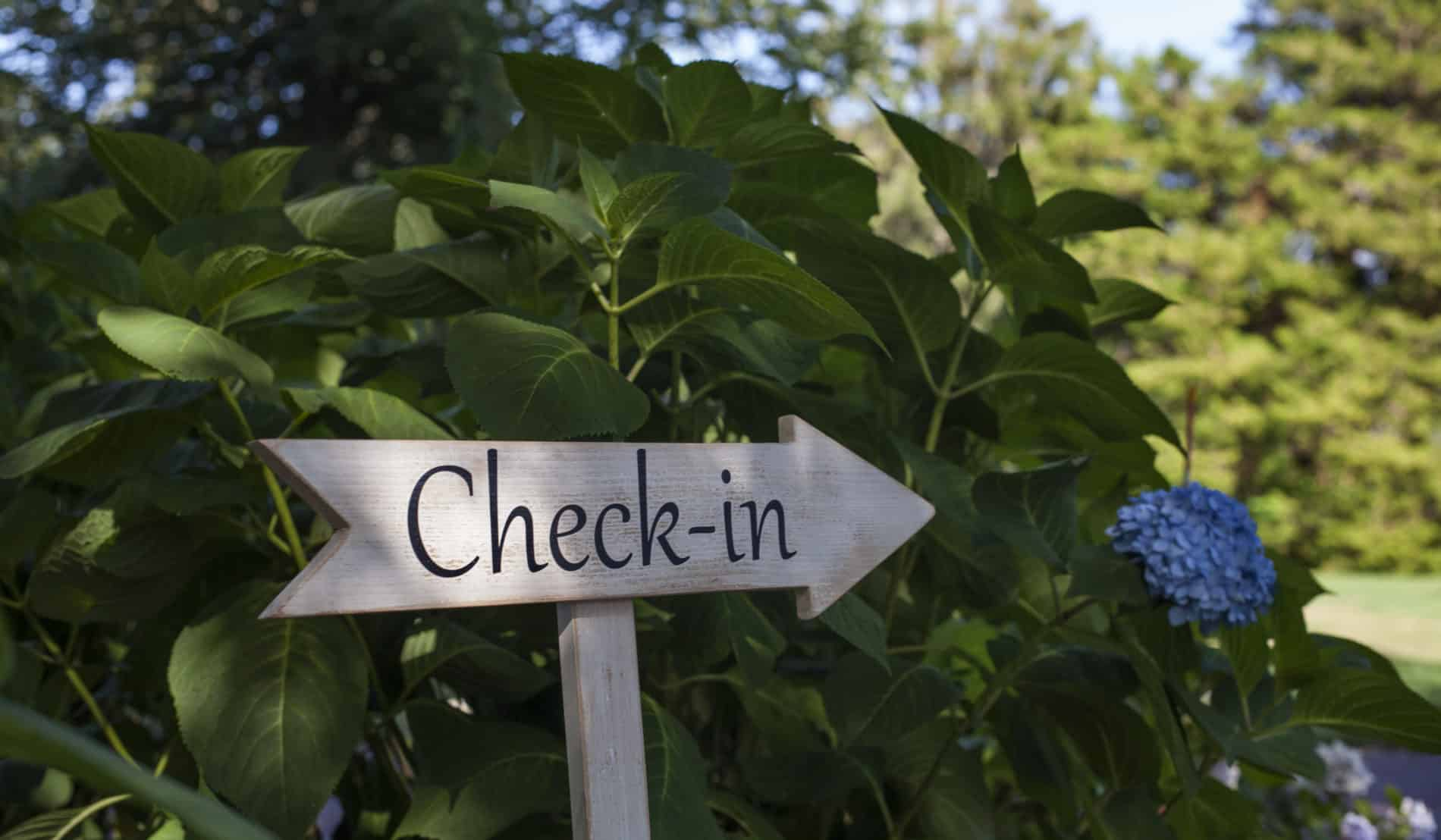 "Wooden arrow shaped sign that says ""Check-in"" in front of a blue hydrangea bush"